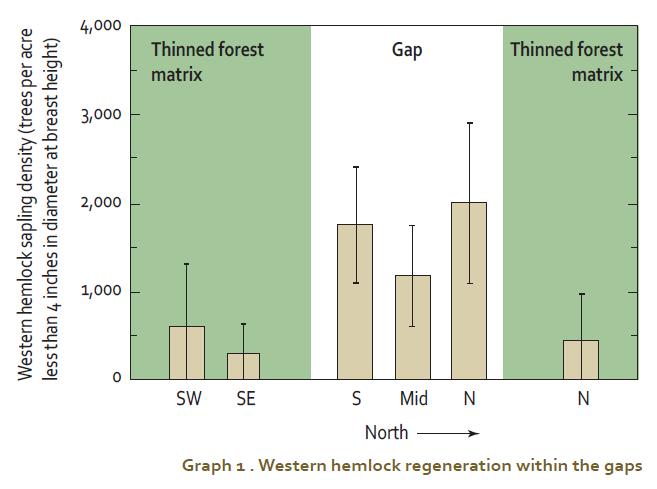 Western hemlock regeneration within the gaps.