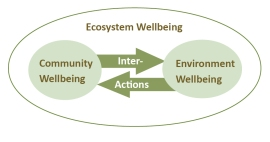 Figure 1. Holistic View of Sustainability