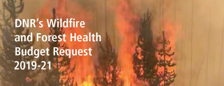 DNR's Wildfire and Forest Health Budget Request 2019-21