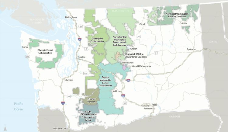 This map shows the forest collaboratives in Washington state that received grant money from the Washington State Department of Natural Resources. (The Nature Conservancy image)