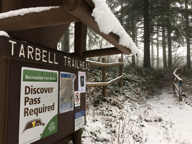 Tarbell Trail Kiosk in snow_2018